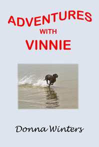 cover-vinnie-website