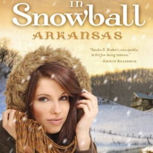 Love Finds You in Snowball, Arkansas (Love Finds You, Book 2)